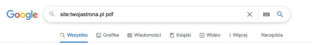 wyszukanie pdf w google