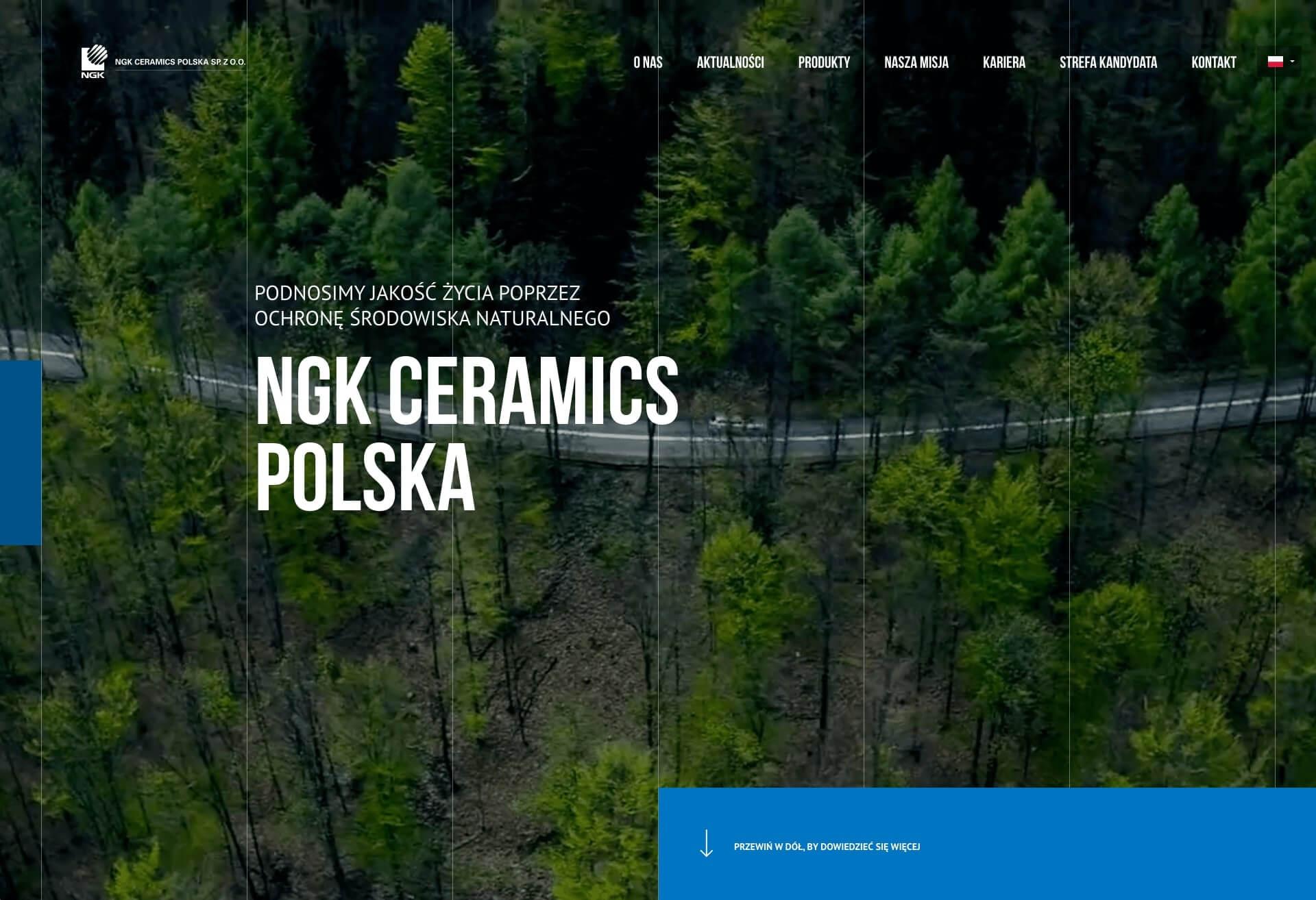 Widok strony ngk-ceramics